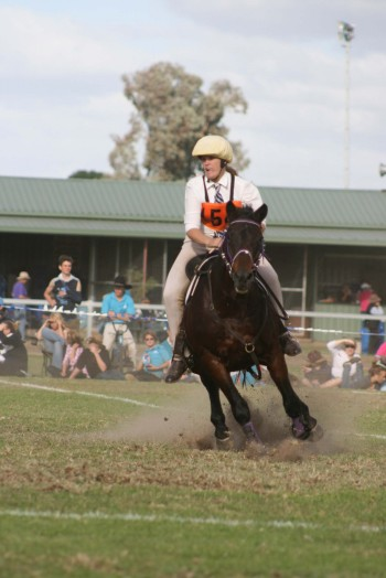 The Virtual Equestrian - Pony Club NSW State Sporting and Campdrafting ...